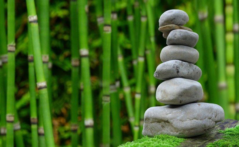 Ładny oraz estetyczny ogród to zasługa wielu godzin spędzonych  w jego zaciszu w trakcie pielegnacji.